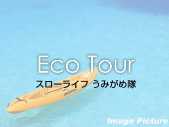 加計呂麻島のスローライフ うみがめ隊「加計呂麻島でのマリン系のショップ」