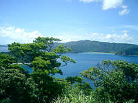 加計呂麻島の安脚場戦跡 - 大島海峡も一望です