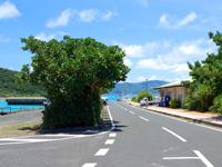生間港(加計呂麻島南部/東部の玄関口)の口コミ