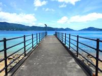 加計呂麻島のスリ浜 - 桟橋先端にお立ち台がある?