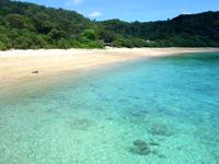 加計呂麻島のスリ浜 - スリ浜の集落は住宅以外がほとんど