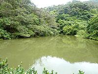 加計呂麻島の艦船用給水ダム跡の写真