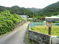 加計呂麻島の武名ガジュマル - 集落に入口の案内があります