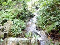 嘉入の滝上部