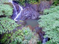 加計呂麻島の嘉入の滝/ウティリミズヌ瀧 - 由来が書いてある案内板も有り