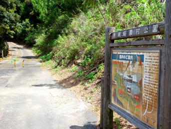 加計呂麻島の待網崎農村公園「渡連から安脚場へ行く途中にあります」