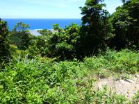 加計呂麻島のくじらの見える丘 - 景色は相変わらずいいのですが・・・