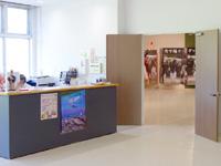 加計呂麻島の加計呂麻島展示・体験交流館/いっちゃむん屋 - 受付横の扉の先が有料コーナー
