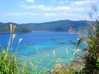 加計呂麻島の芝・実久横断路/絶景ポイント「まさに隠れた穴場の絶景ポイント!」