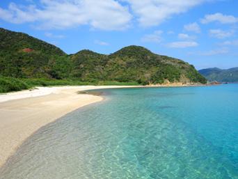 加計呂麻島の芝海岸/芝集落「砂がとても綺麗なビーチです」
