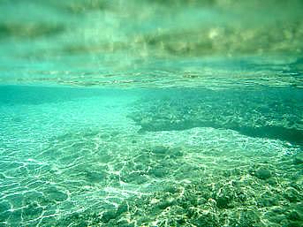芝海岸の海の中