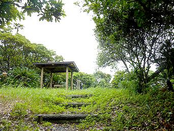 喜界島の平家森