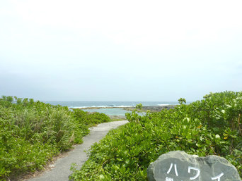 ハワイビーチ/トンビ崎