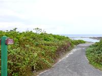 ハワイビーチ/アンニャドゥマリ/トンビ崎