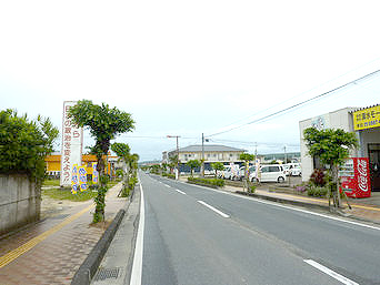 喜界島の町並み/浦原喜界空港線