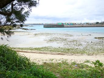 湾港ビーチ