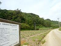 長幕/屏風岩/崖壁及び崖錘の特殊植物群落