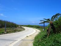 北大東島の北大東島西側の道 - カーブも絵になる道