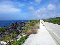 北大東島の北大東島西側の道 - カルストの芸術的な岩もある
