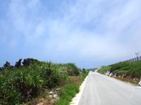 北大東島の沖縄海への道 - カルストの岩が芸術的なので要チェック