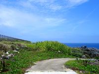 北大東島の沖縄海/沖縄最東端之碑/真黒岬の写真