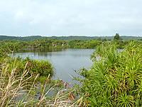 北大東島の大池