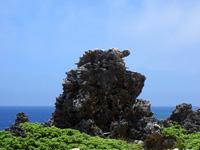 ゴリラ岩/奇岩
