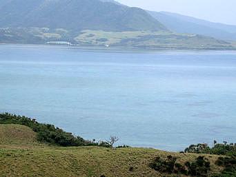 小浜島のちゅらさん和也くんの木(閉鎖・撤去)「牧場の中にある木です」