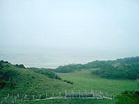 小浜島のちゅらさん和也くんの木 - 牧場の中に和也くんの木はあるようです
