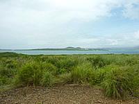 嘉弥真島の嘉弥真島山頂/標高19m - 小浜島も一望できます