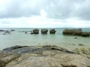 北海岸/ノッチ岩