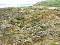 嘉弥真島の東海岸/小石の浜 - 岩場が多いが面白い形のものもある