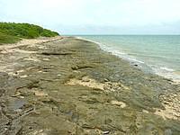 嘉弥真島のせんたく板の浜 - 桟橋の東側にあって歩いてすぐ