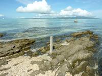 浜島の岩場:小潮