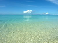 浜島南の海:小潮