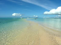 浜島の境界線:小潮