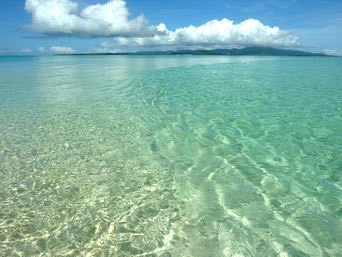 浜島の浜島の潮目:小潮「潮目というか実際は干上がって砂浜が出る場所です」
