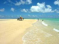 浜島の浜島/幻の島:干潮 - 砂浜も干潮の時なら広々