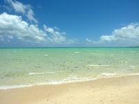 浜島の浜島/幻の島:干潮 - 遠浅の海がさらに浅く感じます