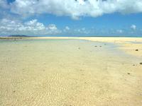浜島の浜島/幻の島:干潮 - 遠浅なので泳ぐには場所を選ぶ必要あり