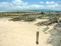 浜島の浜島/幻の島:干潮 - 「島」の証拠の境界杭