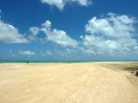 浜島の砂の大地:大潮