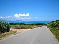 小浜島の小浜港へと向かう道