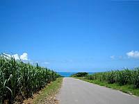 小浜島の小浜港へと向かう道 - 道の先にはキレイな海が見える