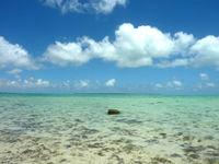 浜島の浜島の東の海:大潮 - 岩が多い分透明度が高い