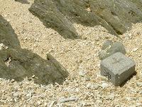 浜島の浜島の東の海:大潮 - この境界杭こそが島の証