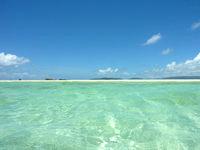 浜島の浜島の南の海:大潮 - 遠浅なので沖まで行くとこんな光景も