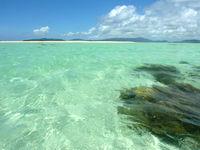 浜島の浜島の南の海:大潮 - 海の中を散歩するのもおすすめ