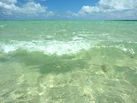 浜島の浜島の南の海:大潮 - 遠浅なので波も小さく見ていて楽しい