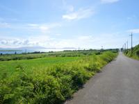 小浜島の大岳周辺の道 - 小浜港まで一気に下る北側の道